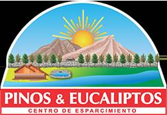 Club Pinos y Eucaliptos